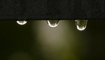 Récupération des eaux de pluie