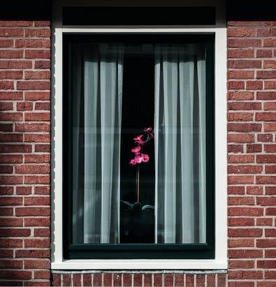 fenêtre neuve