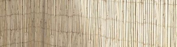 clôture en canisses