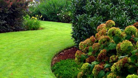 exemple de jardin aménagé