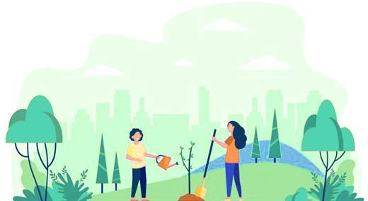 Planter arbre dans le jardin