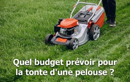quel budget pour tonte pelouse